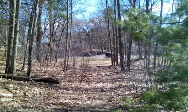 FP Wilderness FH Corner L - The end of the path, looking toward Jewish War Veterans Drive